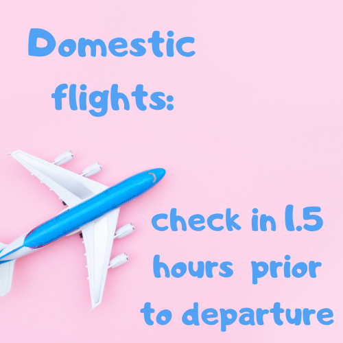 Southampton Airport Departures - domestic flights